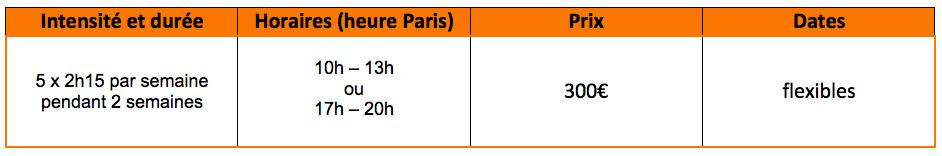 Offre de cours de français intensif virtuels : 5 x 2h15 par semaine pendant 2 semaines, de 10h à 13h ou de 17h à 20h, pour 300€, les dates flexibles